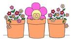flower pot baby mod daisy apparel