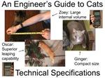 Cat Technical Specs.