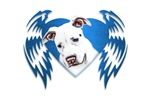 Bully Tribal Heart Wings