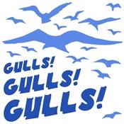 Gulls! Gulls! Gulls!