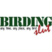 Birding Slut