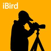 iBird (orange)