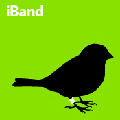 iBand (green)