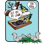Squirrels, Get Off My Lawn!
