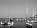Harbor Boats (b&w)