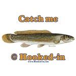 Bowfin Fishing