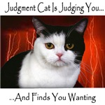 Judgment Cat