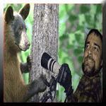 ANIMALS: Doodads for Doolittles