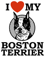 I Love My Boston Terrier t-shirts