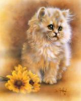 Kitten by Sunflower