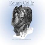 Porcelain Rough Collie