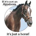 IF IT'S NOT AN APPALOOSA, IT'S JUST A HORSE-1