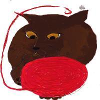 Ms Havana Brown Cat