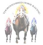 Thoroughbred Horse Racing II