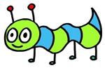 Boy Bug