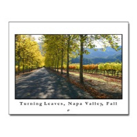 Napa Valley Wine Country Calendars