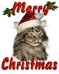 Maine Coon Christmas Cat