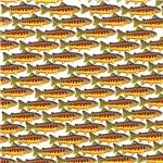 Golden Trout Pattern