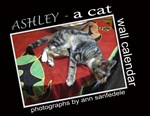 Ashley - a tabby cat - wall calendar , cards, etc.