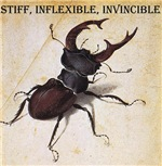 Invincible Stag Beetle