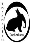 The Indonesian Jackaderm