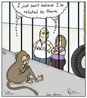 Monkey Embarrassment