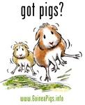 Got Pigs?