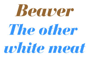 Beaver, the other white meat