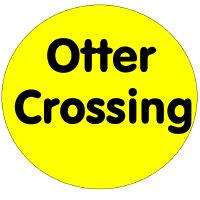 Otter crossing