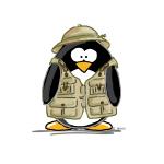 Safari Penguin