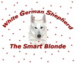 The Smart Blonde