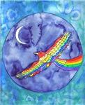 Rainbow Bird in Flight