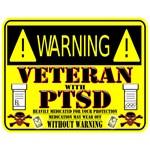 PTSD Medicated Veteran