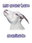 Goatitude™