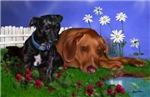 Daisy Mae & Annie
