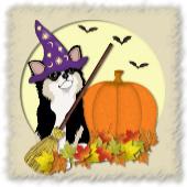 Chihuahua Halloween Items
