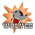 WOLVES FOOTBALL TEAM T-SHIRTS AND GIFTS