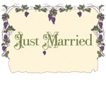 Vineyard Just Married T-Shirts