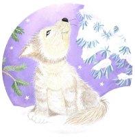 Little Wolf in Snow