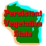 Wisconsin - Persistent Vegetative State