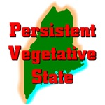 Maine - Persistent Vegetative State