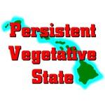 Hawaii - Persistent Vegetative State