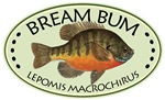 BREAM Bum Fisherman