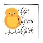 Rescue Chick