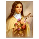 Saint Therese - Little Flower