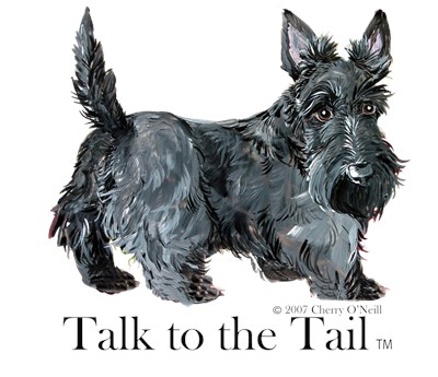 Scottish Terrier Tail