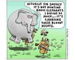 Rogue Elephants