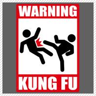 Warning: Kung Fu