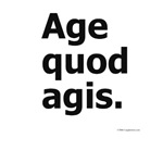 Age Quod Agis. Do What You Are Doing