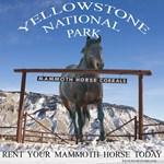 Mammoth Horse